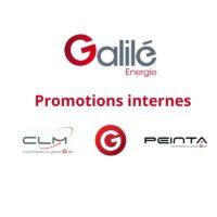 Des Promotions Internes au sein du pôle Energie
